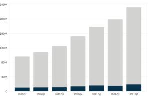 Crowdstrike's Revenue by Segment